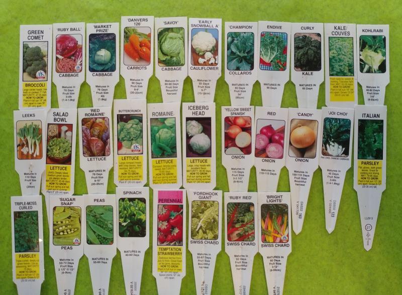 vegetable-plant-labels